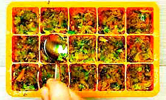 Овощной бульонный кубик.