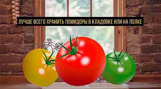 Luchshe_hranit_pomidoryi_v_kladovke_ili_na_polke
