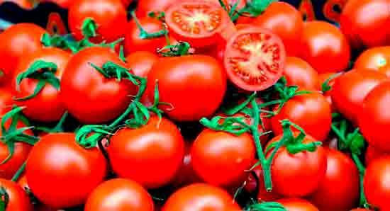 Pomidoryi_vkusnee_pri_komnatnoy_temperature