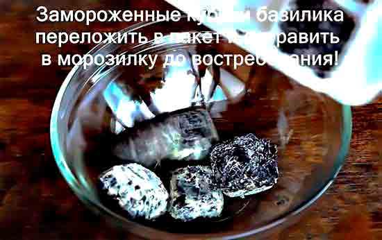 Zamorozhennyie_kubiki_bazilika