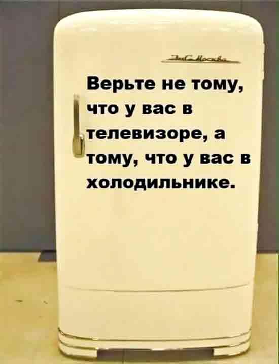 Domashniy_holodilnik_Zil