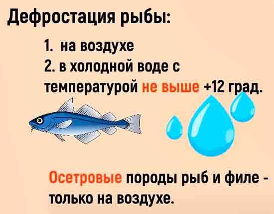 Defrostatsiya_ryibyi